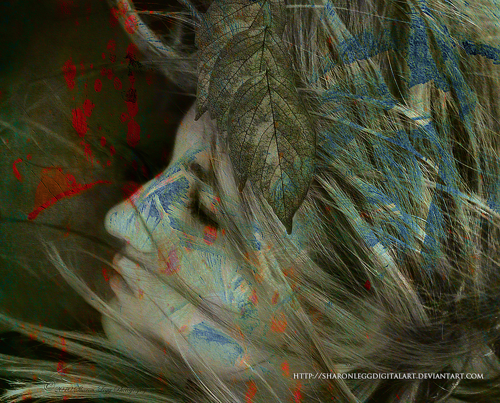 Metamorphosis by SharonLeggDigitalArt