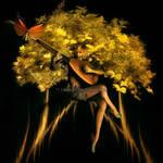 Fairy-Tree-of-Autumn