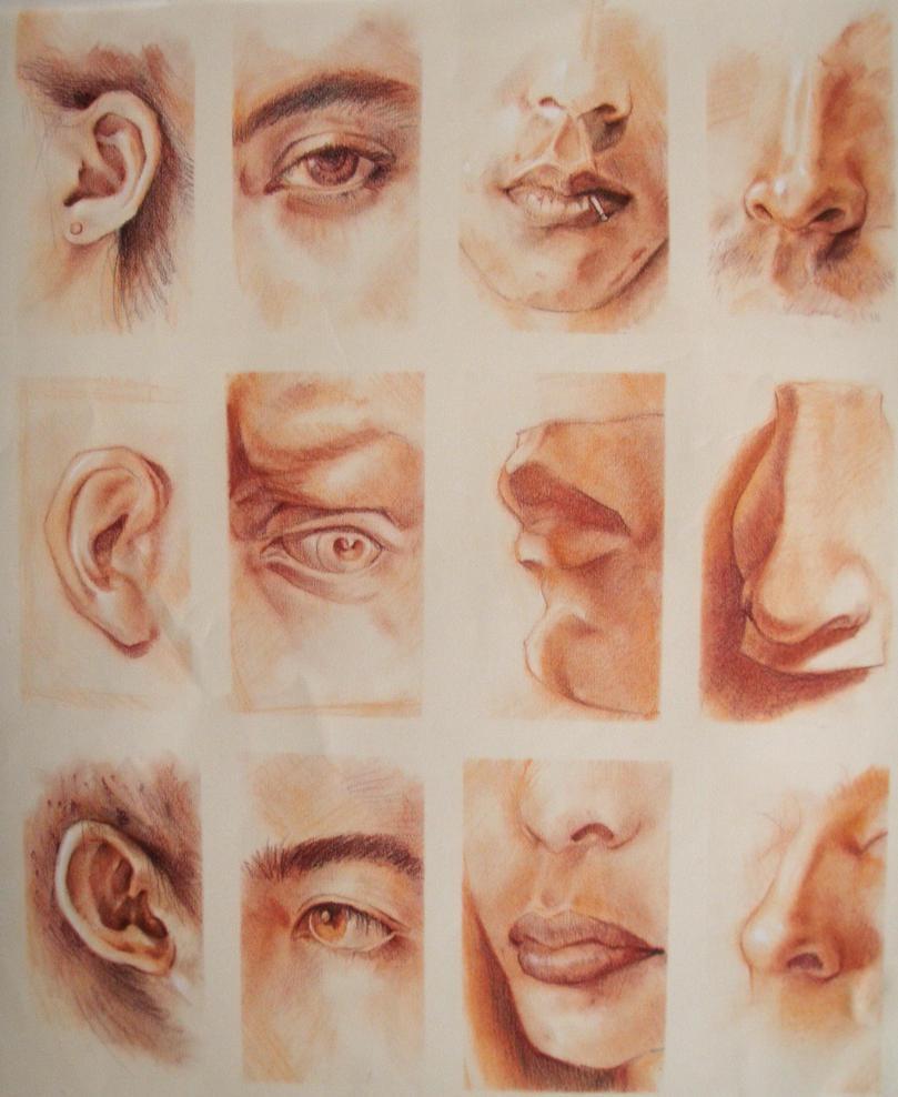 Eyes Mouth Nose 16