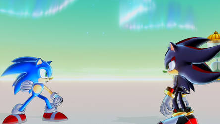 Sonic and Shadow Training by tyleralexander123