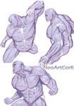 Male Anatomy 25042018