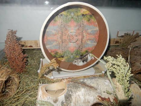 Hamster wheeeeeel X)