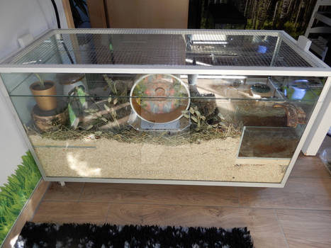 Cage update for Anna