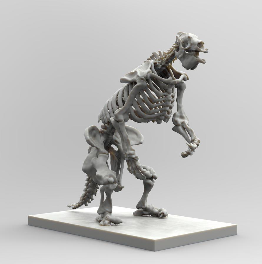 Megatherium sp by taboada