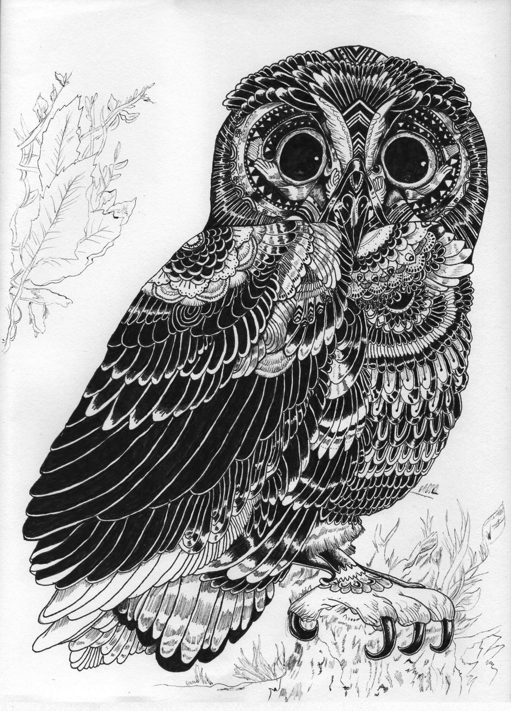 An Innocent Owl by HGManiac15