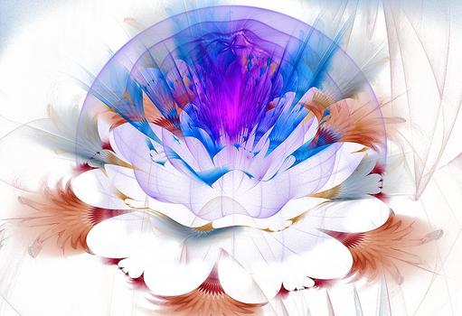 AZ Flower