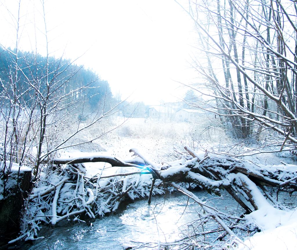 winter landscape photography snow stream trees