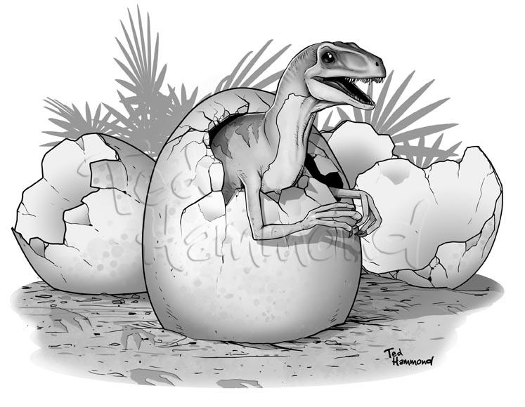 Raptor by ted1air