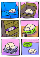 Places Cats Sleep by little-ampharos