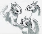 Toothless Drawings