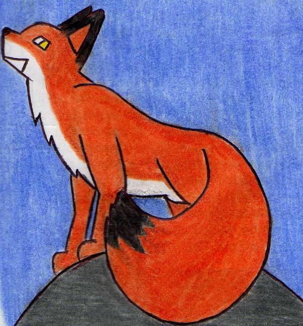 Red Fox by Kooskia