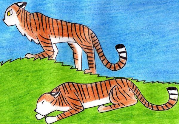 The Tiger by Kooskia