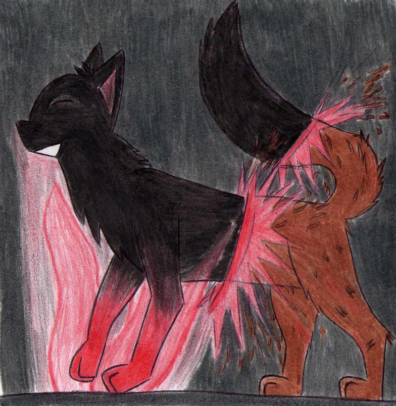 The return of Firepaw by Kooskia