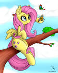 Fluttershy (coloring) [2]