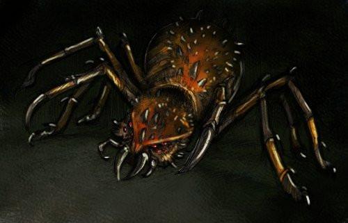 lionhead spider by REDFlameInteractive