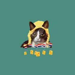 Holland Kitty Tshirt Design [Suggestions please!]