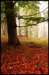 The power of autumn