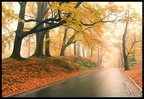Autumn what I like by mjagiellicz