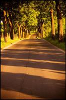 My way by mjagiellicz