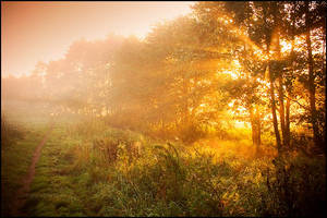 Autumn path by mjagiellicz