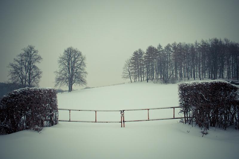 Winter monochrome by mjagiellicz
