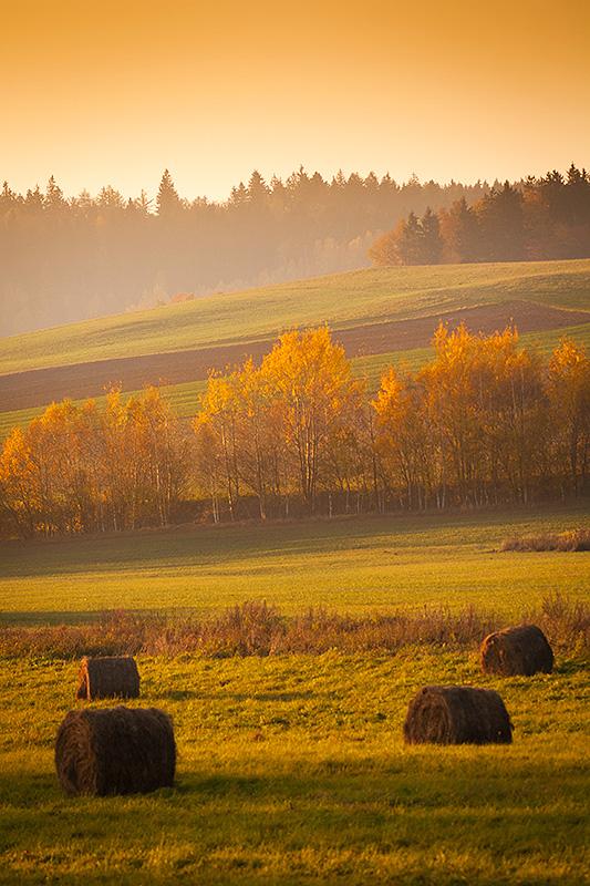 Polish landscape by mjagiellicz