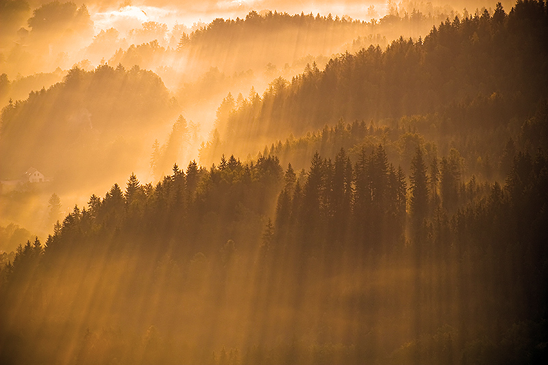 Magic light by mjagiellicz