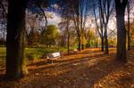 Wroclaw autumn