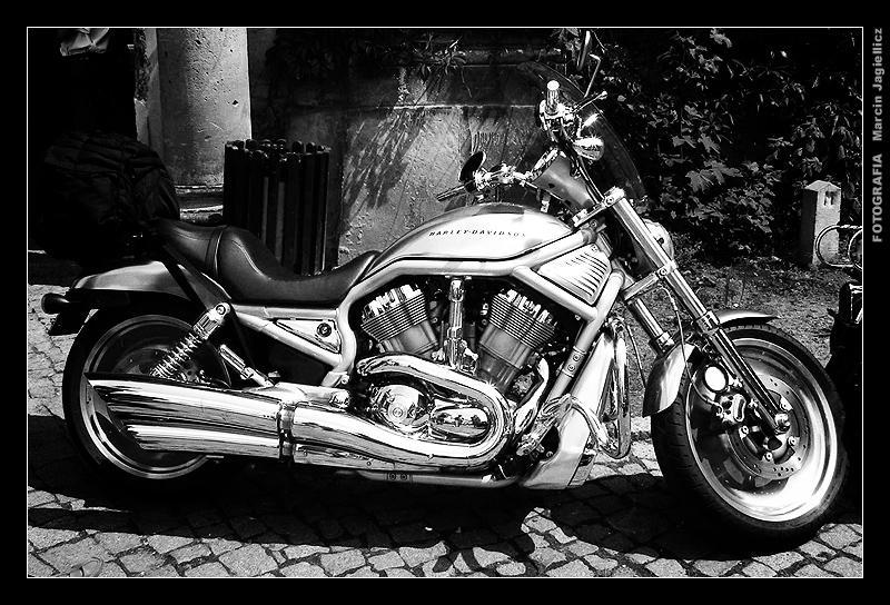 Harley Davidson by mjagiellicz
