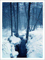 Winter 2 by mjagiellicz