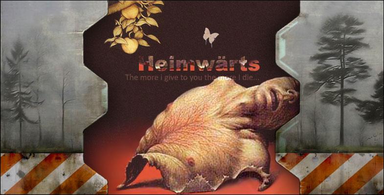 Heimwarts by aryanmehr