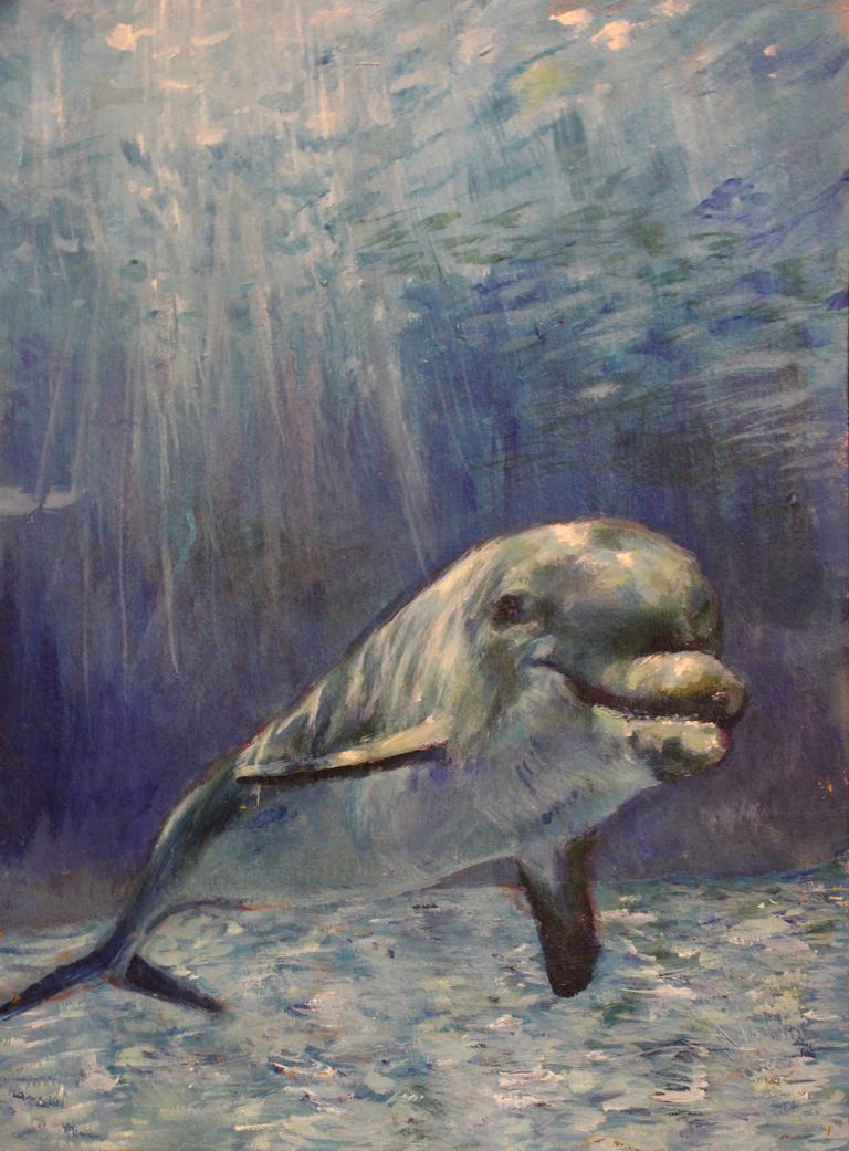 Dolphin by bunnylovinggrl