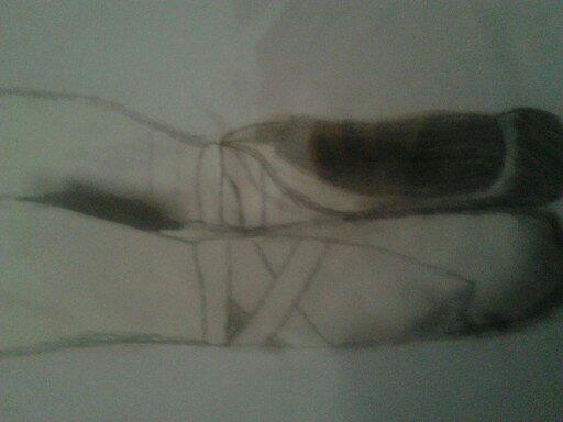 Ballet slippers by MegAtist