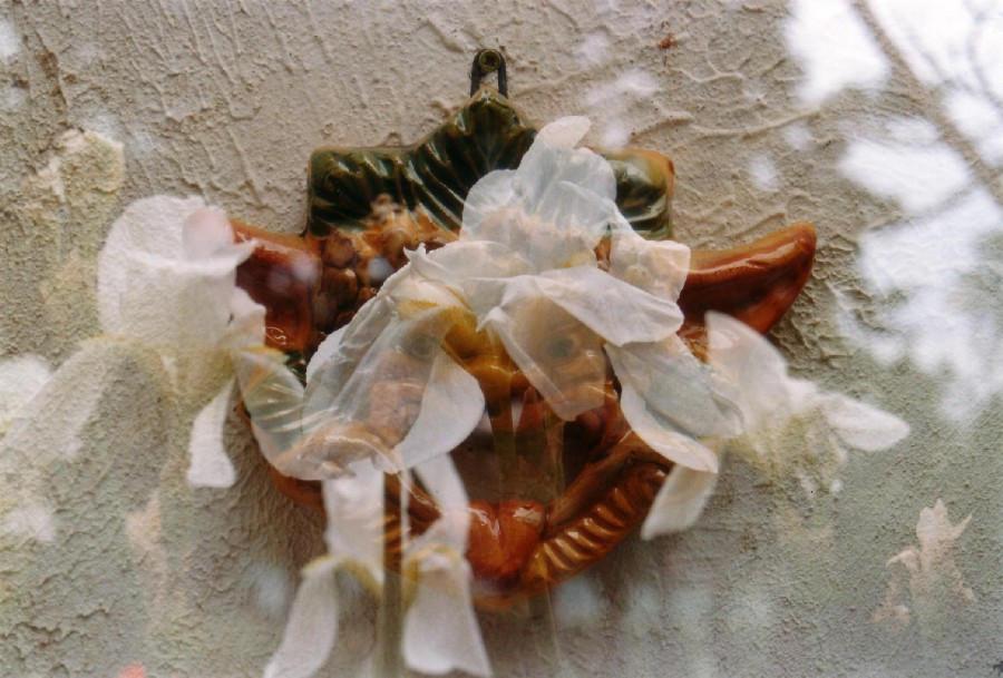 Il Fiore e la Maschera by AlexanderFreud