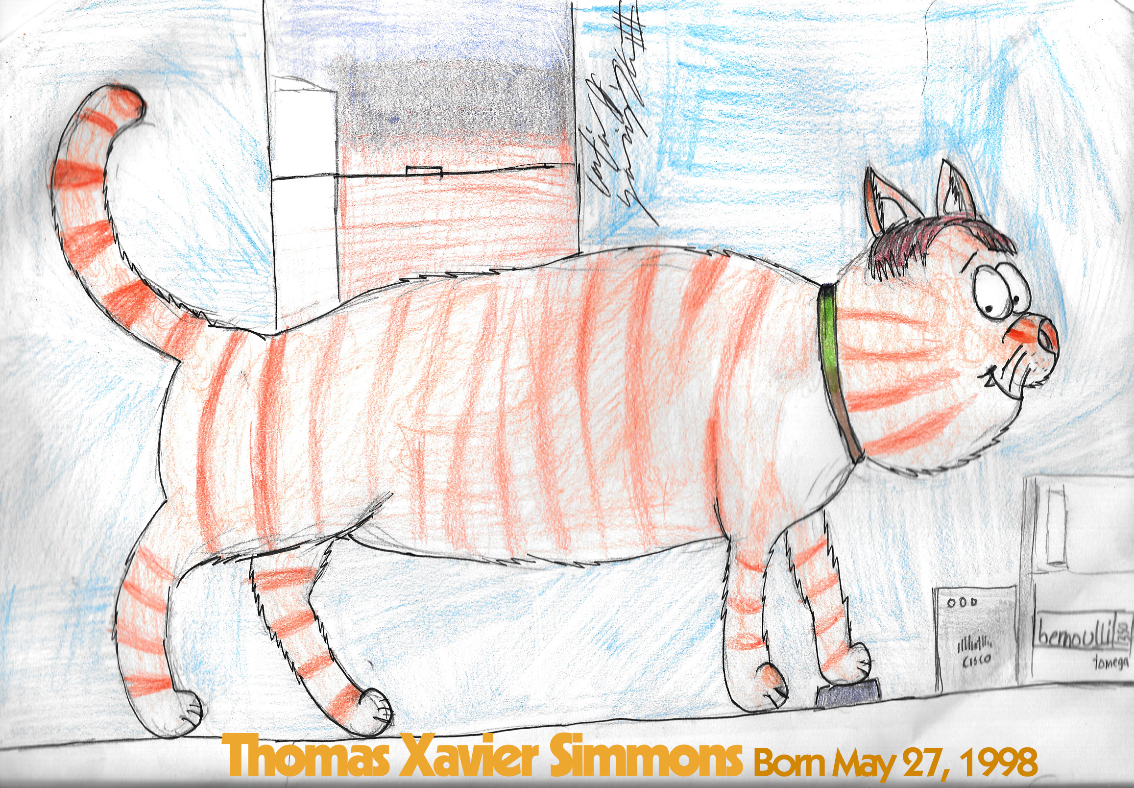 Tommy, The Sly Tabby by citynetter