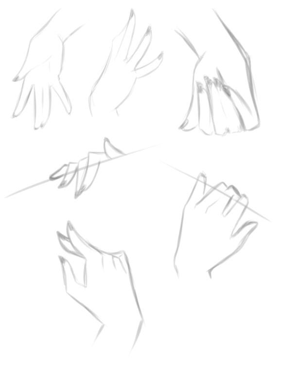 hand study by rika-dono