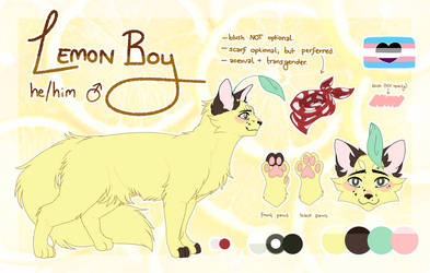 Lemon Boy - Kin Sona REF (2019 / CHECK DESC)