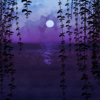 Evening Air by Dinnartz