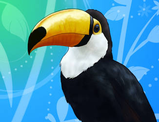 Toucan by theworldisbehindus