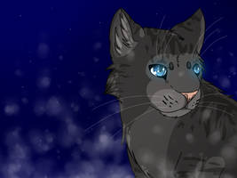 Jayfeather by Sushinessa
