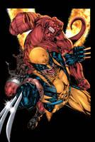 Wolverine and Hellboy by xXNightblade08Xx