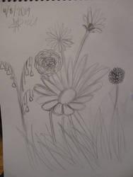 Sketchbook adventure 2019 #12: Flowers by SuperMapleGirl
