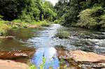 Gardners Falls, Maleny 1d