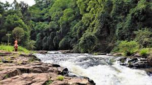 Gardners Falls, Maleny 1g