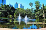 Brisbane City Botanic Gardens No.1