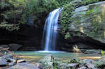 The Buderim Forest Waterfall No.1
