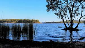Ewen Maddock Dam (2)