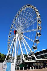 The Wheel of Brisbane No.1