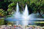 Brisbane City Botanic Gardens No.3