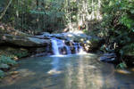 The Buderim Forest Waterfall No.3